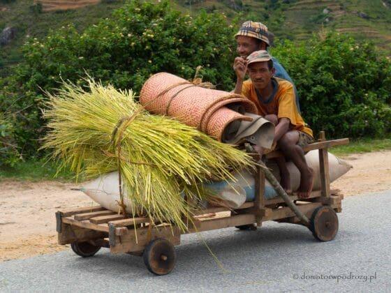 Popularny środek transportu na Madagaskarze