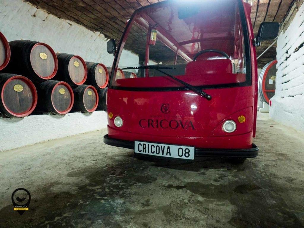 Beczki z winem w Cricovej