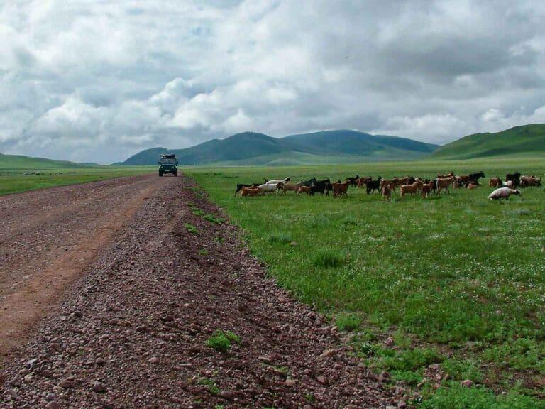 Mongolia czyli hajda na step